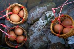 Trzy kosza jajka gotowali się w gorących wiosen Chiang Mai, Tajlandia Fotografia Stock