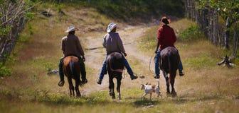 Trzy kowboja i pies na drodze gruntowej obraz stock