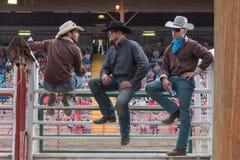 Trzy kowboja siedzą na korytkach i zegarek panice fotografia stock