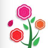 Trzy kwiatu Obraz Royalty Free