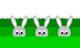 Trzy śliczny królik w trawie - ilustracja Obraz Royalty Free
