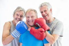 Trzy mężczyzna pozuje w bokserskich rękawiczkach obrazy stock