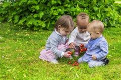 Trzy małej dziewczynki bawić się w ogródzie Zdjęcia Royalty Free