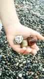 Trzy małej kamień skały na toddler& x27; s ręka na skalistym tło dennego brzeg lecie Gruzja zdjęcie stock