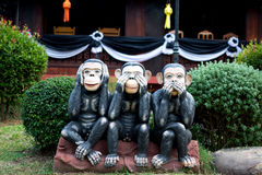 Trzy małpa, zamyka up ręka, słucha żadny zło i mówi żadny zło, małe statuy z pojęciem widzią żadny zło Obrazy Royalty Free
