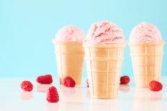Trzy malinka lody rożka Zdjęcia Royalty Free