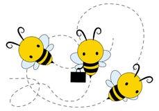 Trzy miodów pszczoła Zdjęcia Stock