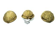 Trzy nutshells z kostka do gry Zdjęcie Royalty Free