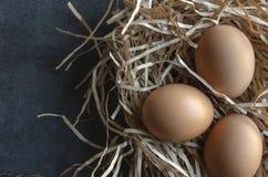 Trzy Organicznie Brown jajka Uwalniają pasmo zdjęcia royalty free