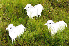 trzy owce Obraz Royalty Free