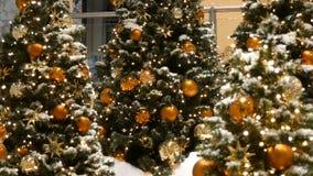 Trzy pięknie dekorująca choinka z wielkimi piłkami, gwiazdy, girlandy, sztuczny śnieg, i jesteśmy zbiory