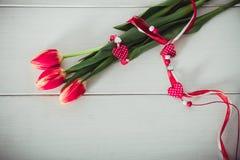 Trzy pięknego czerwonego tulipanu Fotografia Royalty Free