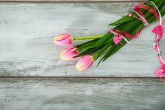 Trzy pięknego kolorowego tulipanu Fotografia Royalty Free