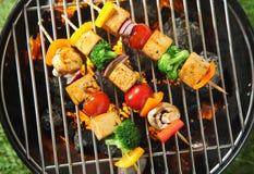 Trzy piec na grillu tofu lub bobowego curd kebabs Fotografia Stock