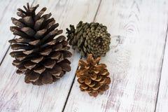 Trzy Pinecones na Białym stajni deski podłoga zakończeniu Up wieśniak zdjęcia stock