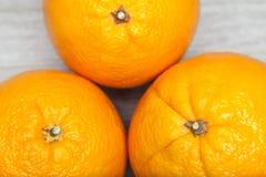 trzy pomarańczy Zdjęcie Royalty Free
