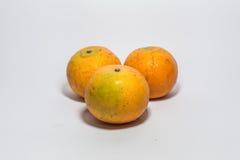 trzy pomarańcze Obraz Royalty Free