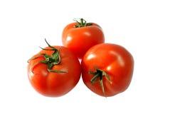 trzy pomidoru Obraz Stock