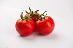trzy pomidoru Zdjęcia Royalty Free