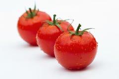 trzy pomidoru Zdjęcie Royalty Free