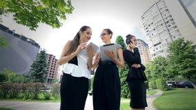 Trzy pomyślna biznesowa kobieta pracuje na zbiory