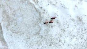 Trzy potomstwa, sportowe kobiety robi rozciąganiu ćwiczą, rozgrzewka, na piaskowatym wierzchołku łup na plaży, świt zdjęcie wideo