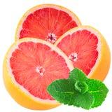 Trzy przyrodniego grapefruits z mennicą odizolowywającą na białym tle obraz royalty free
