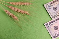 Trzy pszenicznego spikelets Dwadzieścia pięć USA dolarów Zielony tło Sprzedaż i zakup adra Pojęcie inwestycja w obrazy royalty free