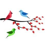 Trzy ptaków gałąź Zdjęcie Stock