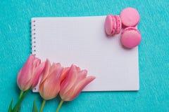 Trzy różowego tulipanu i trzy różowego macaroons Zdjęcie Stock