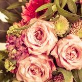 Trzy róży w zakończeniu w górę widoku obrazy royalty free