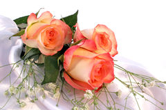 trzy róże Zdjęcia Stock