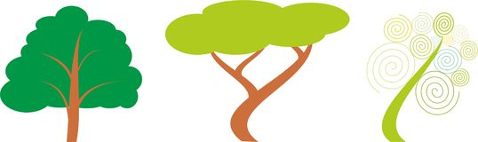 Trzy różnego gatunku drzewa Fotografia Royalty Free