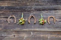 Trzy rdzewieli podkowy i dzikiej truskawki wiązkę na ścianie Zdjęcia Stock