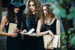 Trzy rocznik kobiety jako czarownicy fotografia royalty free