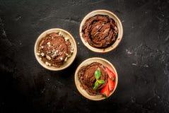 Trzy rodzaju czekoladowy lody Fotografia Stock