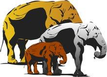 Trzy słonia Royalty Ilustracja