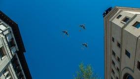 Trzy samolot lata nad miastem Zdjęcie Royalty Free