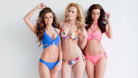 Trzy seksownej młodej kobiety jest ubranym w bikini