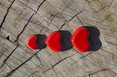 Trzy serca na drewnie Obraz Stock