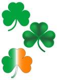 trzy shamrocks irlandzkich Zdjęcia Stock