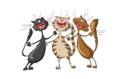 Trzy szczęśliwego kota śpiewa rozochoconą piosenkę na odosobnionym białym tle Obrazy Royalty Free