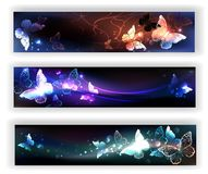 Trzy sztandaru z noc motylami Obraz Royalty Free