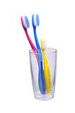 trzy toothbrushes Zdjęcia Royalty Free