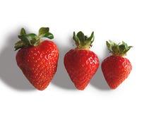 trzy truskawki. Zdjęcie Stock