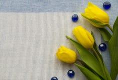 trzy tulipanu żółty Obrazy Stock