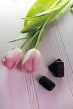 Trzy tulipanu na białym tle Zdjęcia Royalty Free