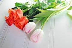 Trzy tulipanu na białym tle Fotografia Royalty Free