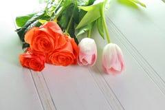 Trzy tulipanu na białym tle Obraz Royalty Free