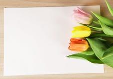 Trzy tulipanu różni kolory na prześcieradle papier Zdjęcie Royalty Free